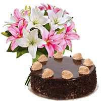 Best Cake in India - Chocolate Cake From 5 Star