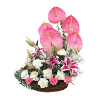 Same Day Flower to India - Anthurium Basket