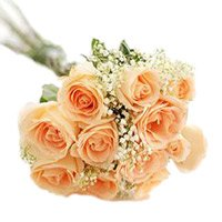 Flowers to India : Peach Roses ot India